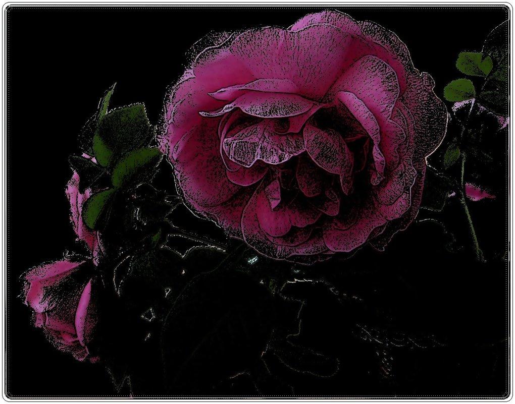 Розовые розы - Нина Корешкова