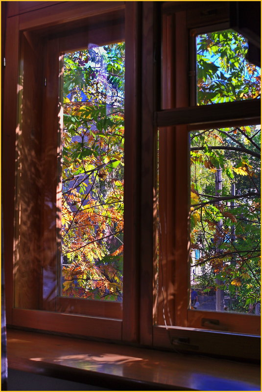 Осень в окне... - Владимир Михайлович Дадочкин