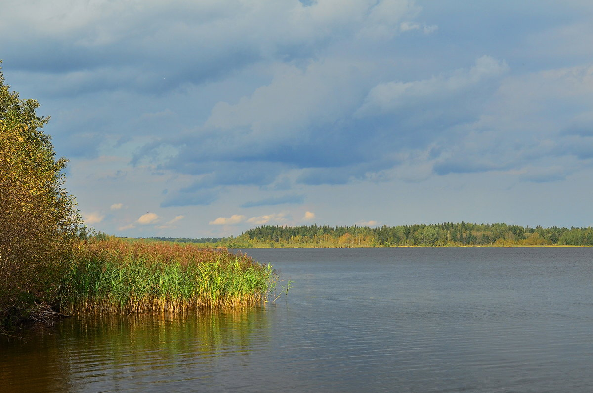 Озерная гладь - Николай Танаев