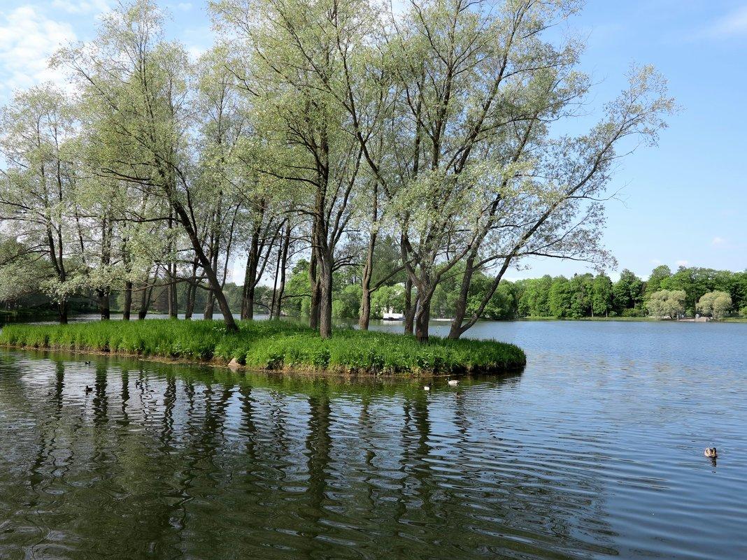 Островок в Екатерининском парке - Наталья