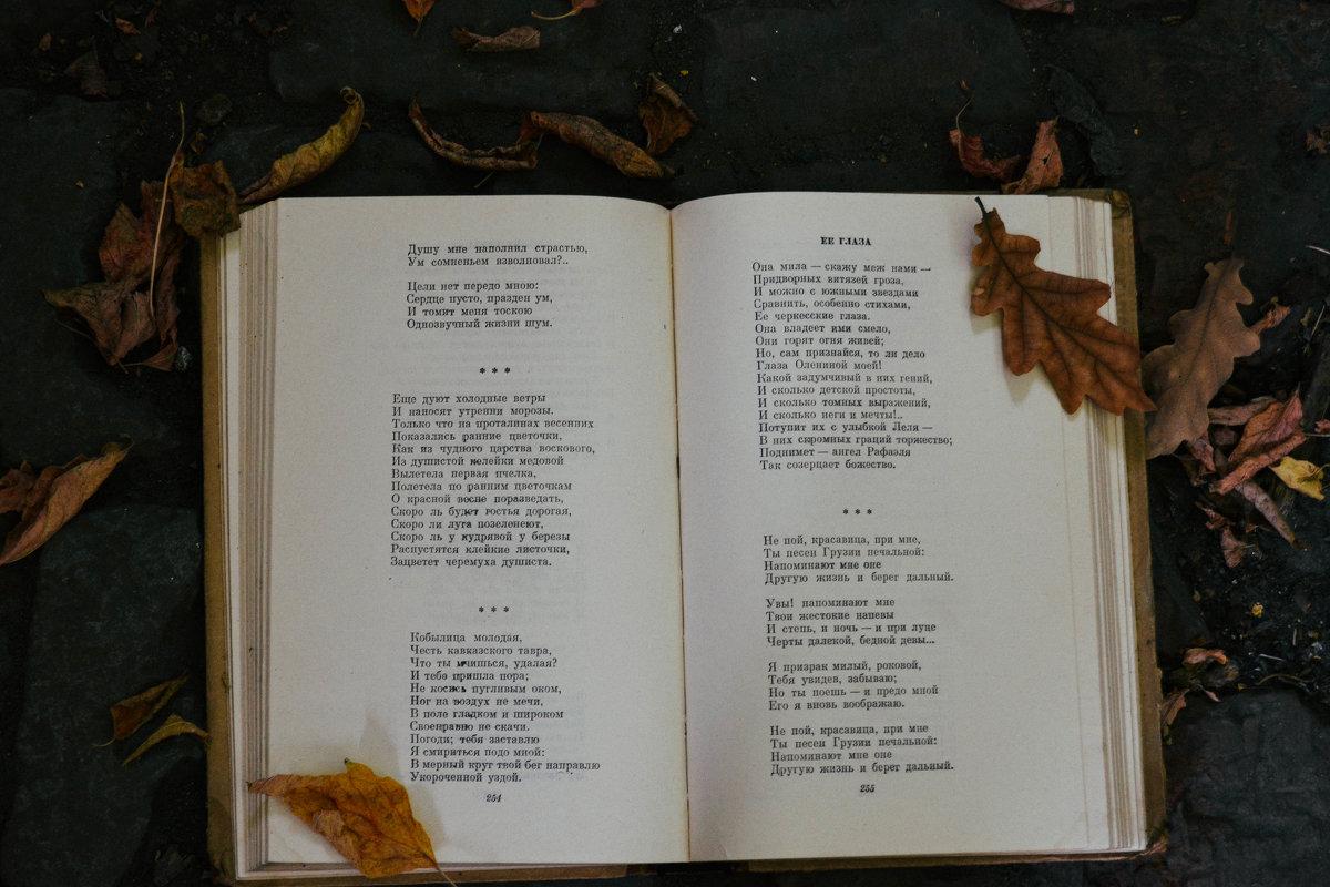 Книга и жёлтые лесточки - Света Кондрашова