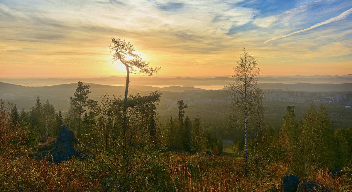 Туманное утро - vladimir Bormotov