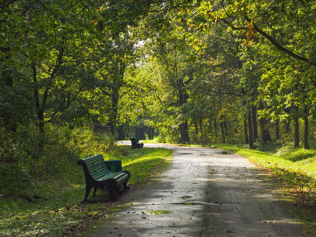 Парк в сентябре - Виталий