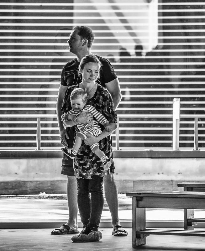 семья - Алина Ванага