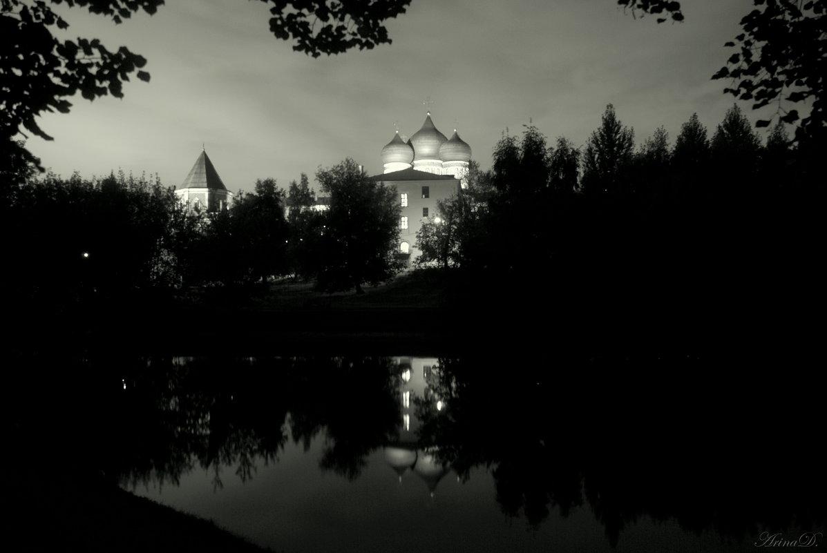 .. Черно-белый этюд .. - Арина Дмитриева