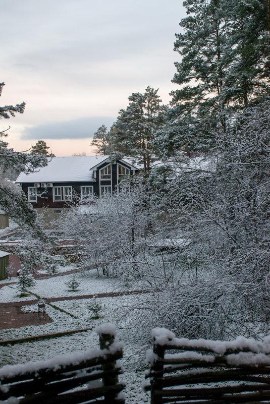 Первый снег - Юрий Борзов