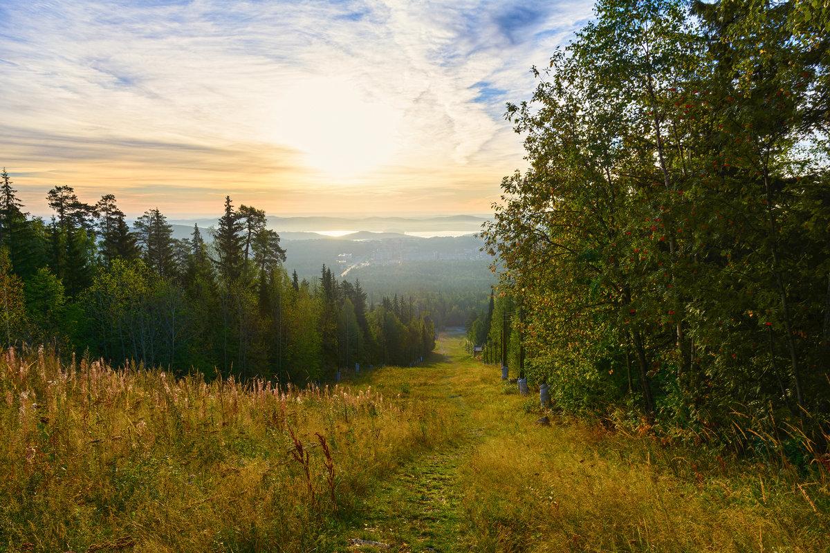 Зеленая тропинка - vladimir Bormotov