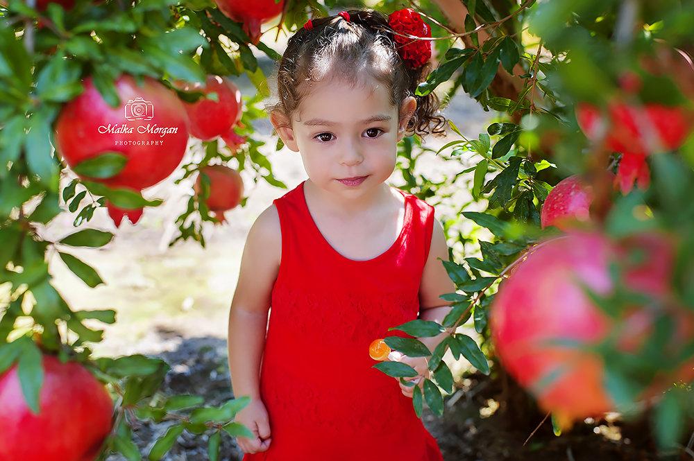 Малышка  Линой - Malka Morgan