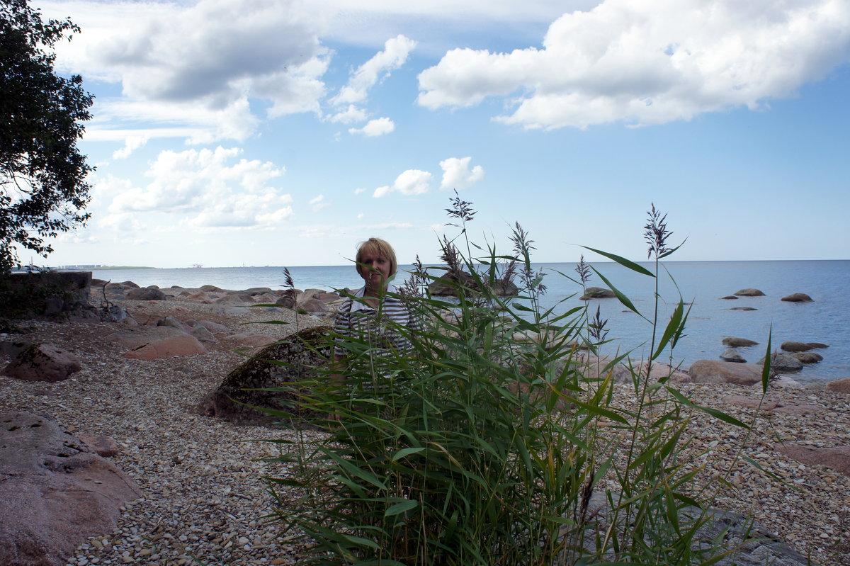 Финский залив - Елена Павлова (Смолова)