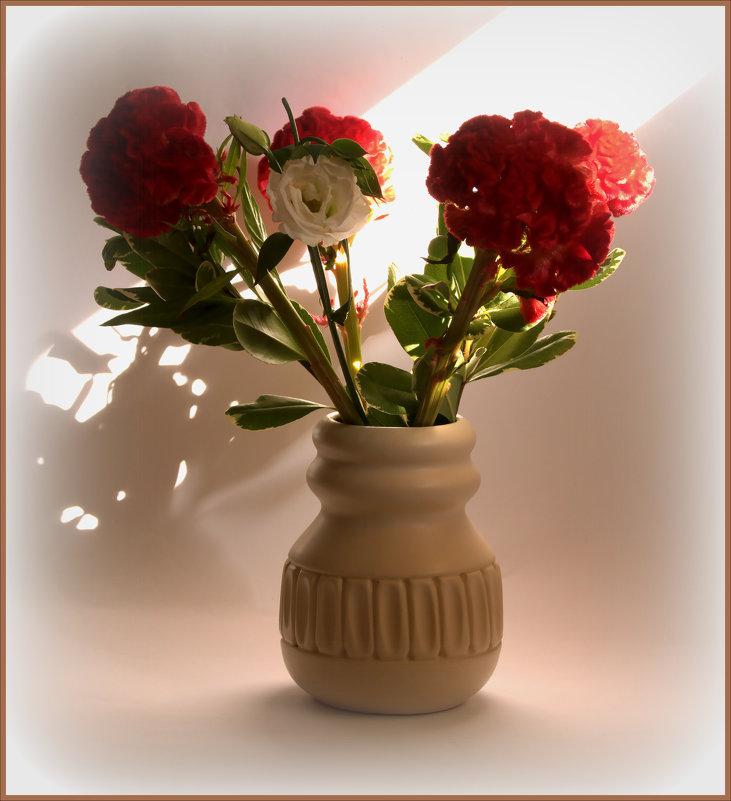 Цветы и луч солнца - Alla