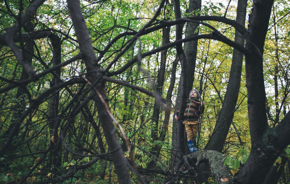 темный лес2 - Анна Вязьмина-Кирилюк