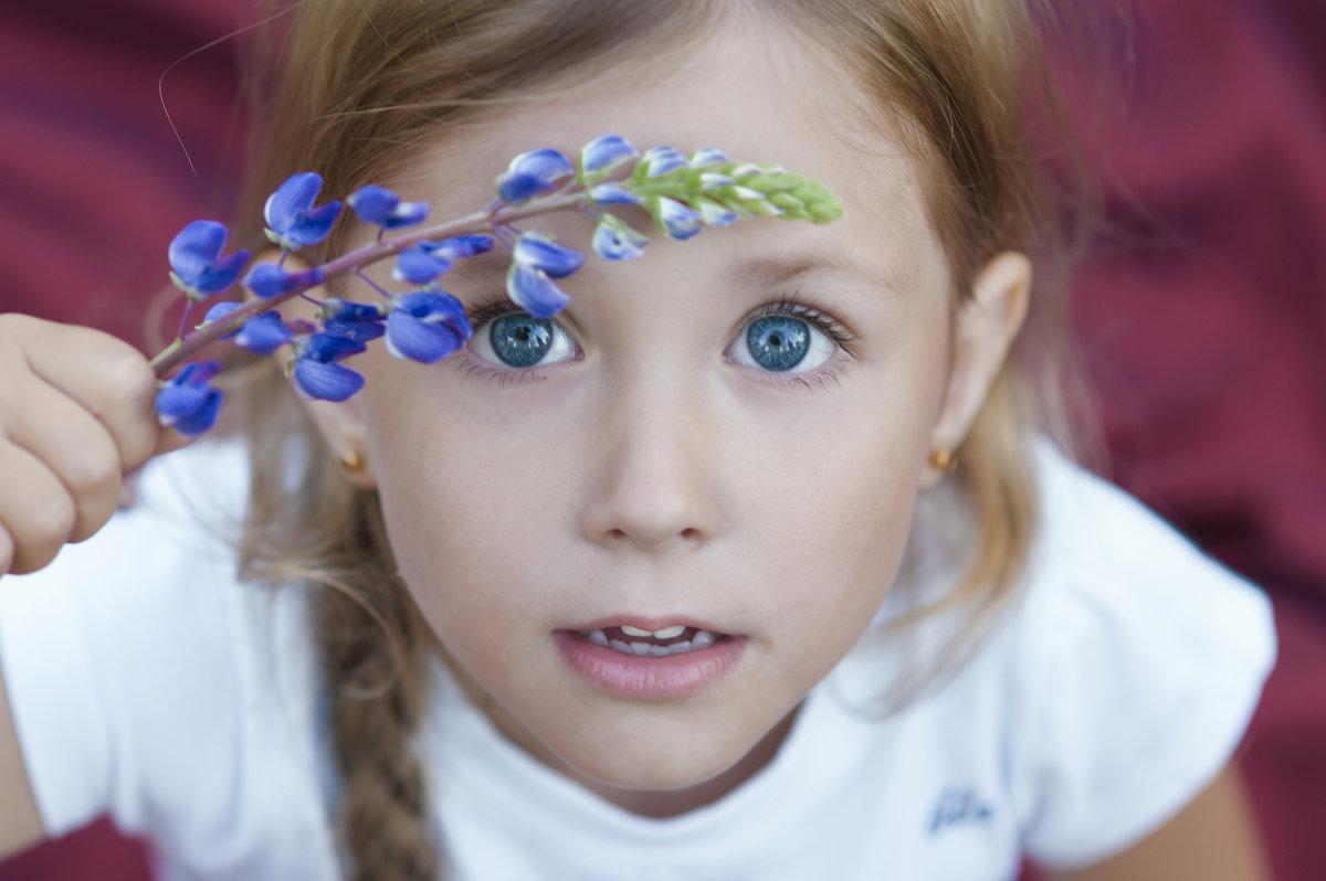 сапфировые глазки) - Kate Vasileva