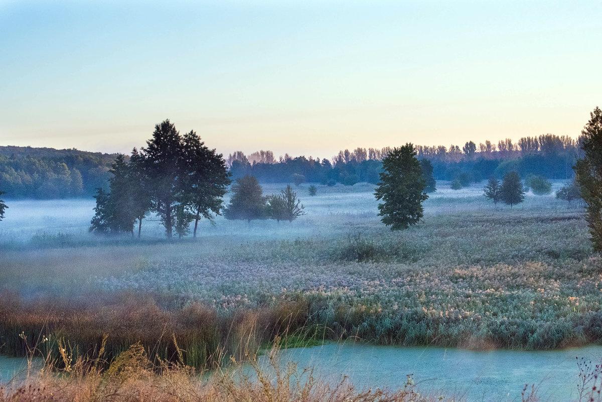 Осеннее утро - Инна Голубицкая