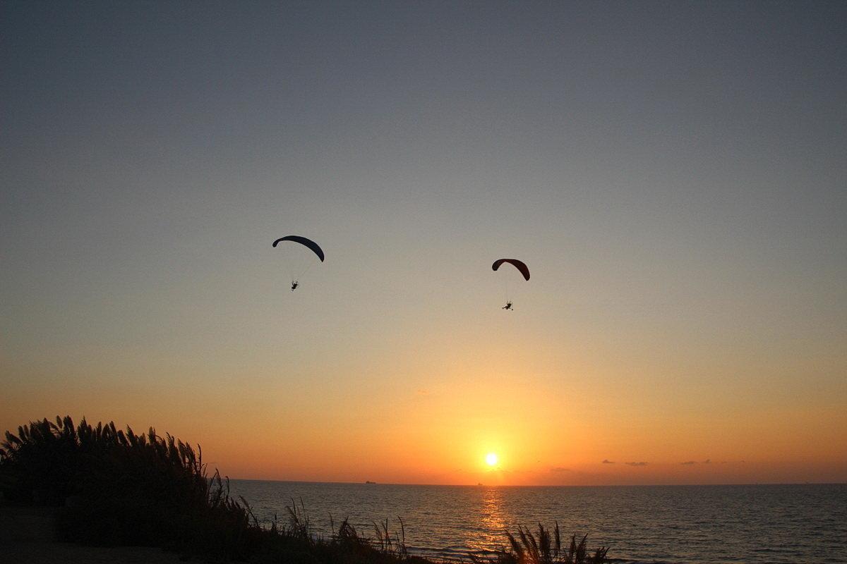 Перед закатом - Лев Аронс