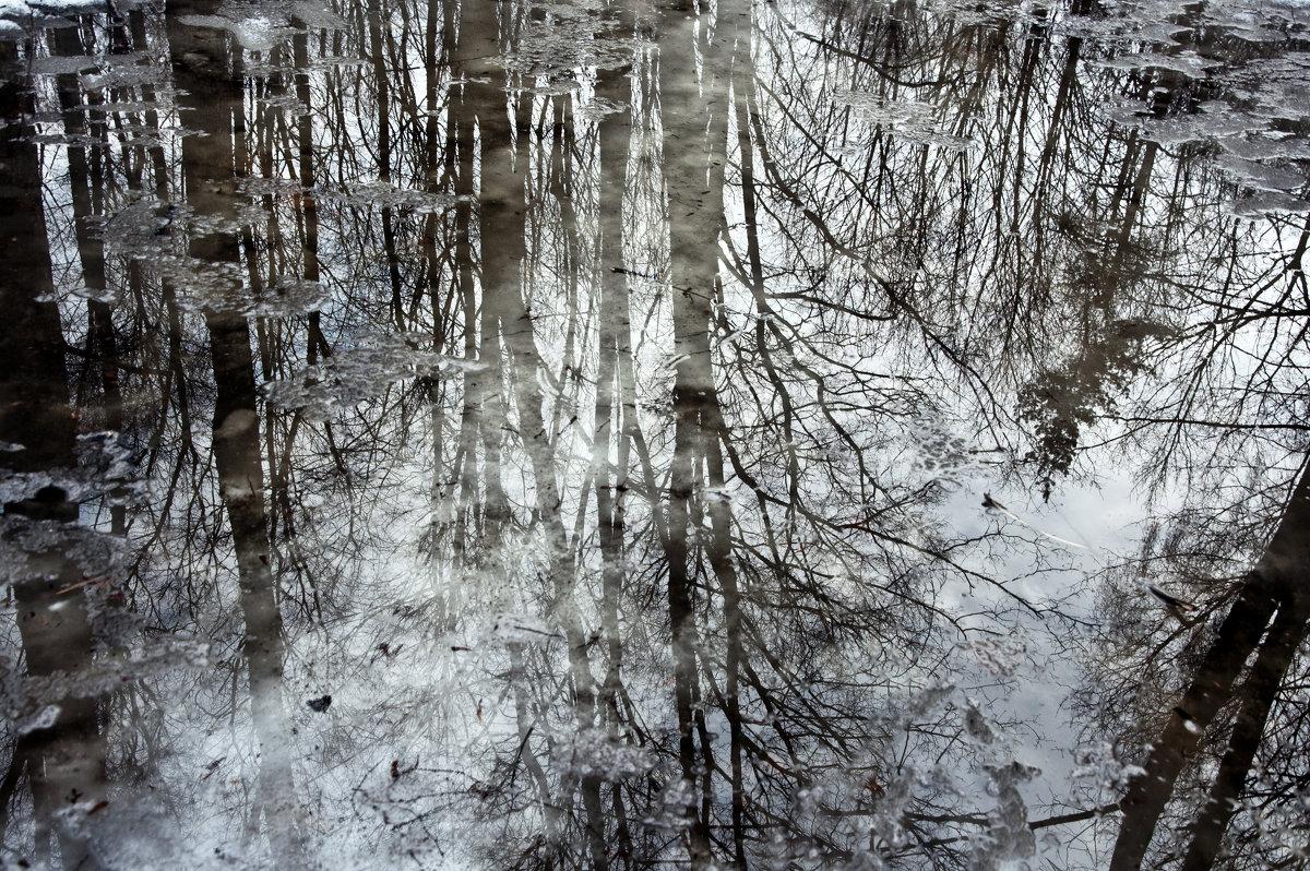 Отражение - Ната Еременко