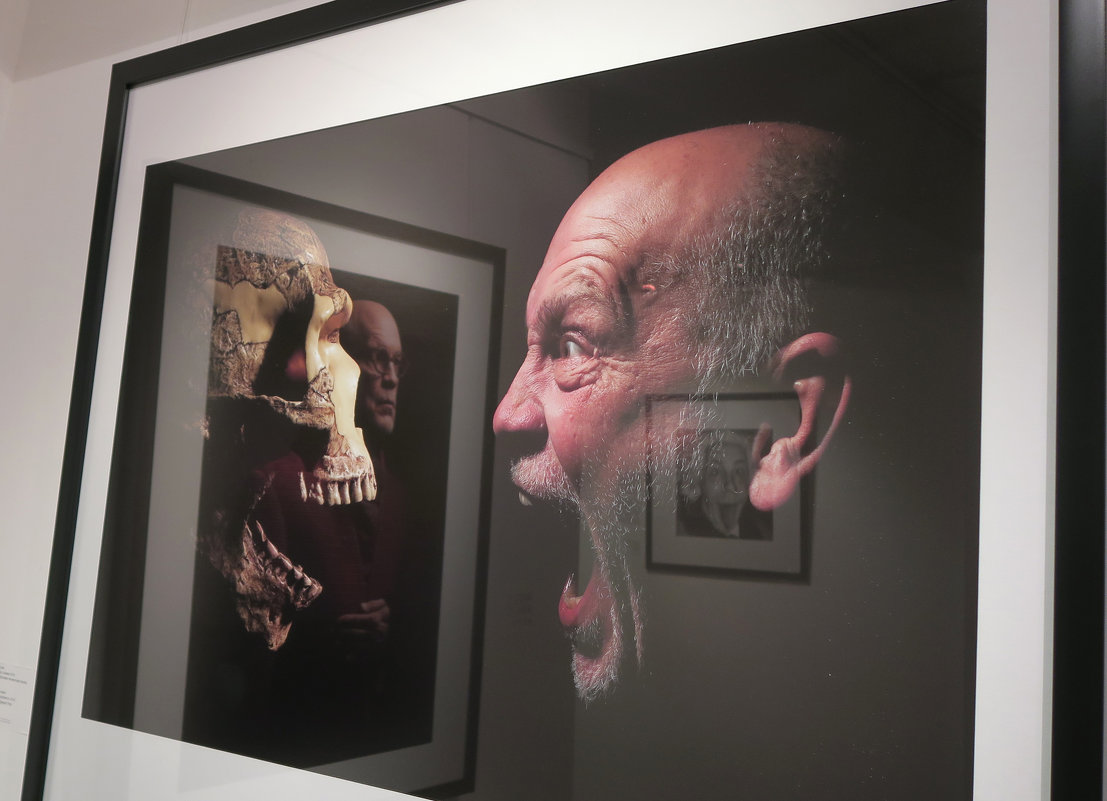 Картинки с выставки - Татьяна Нижаде