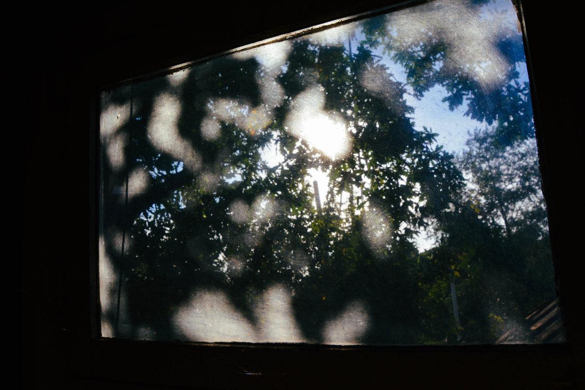 солнце пробивается в окно - Света Кондрашова