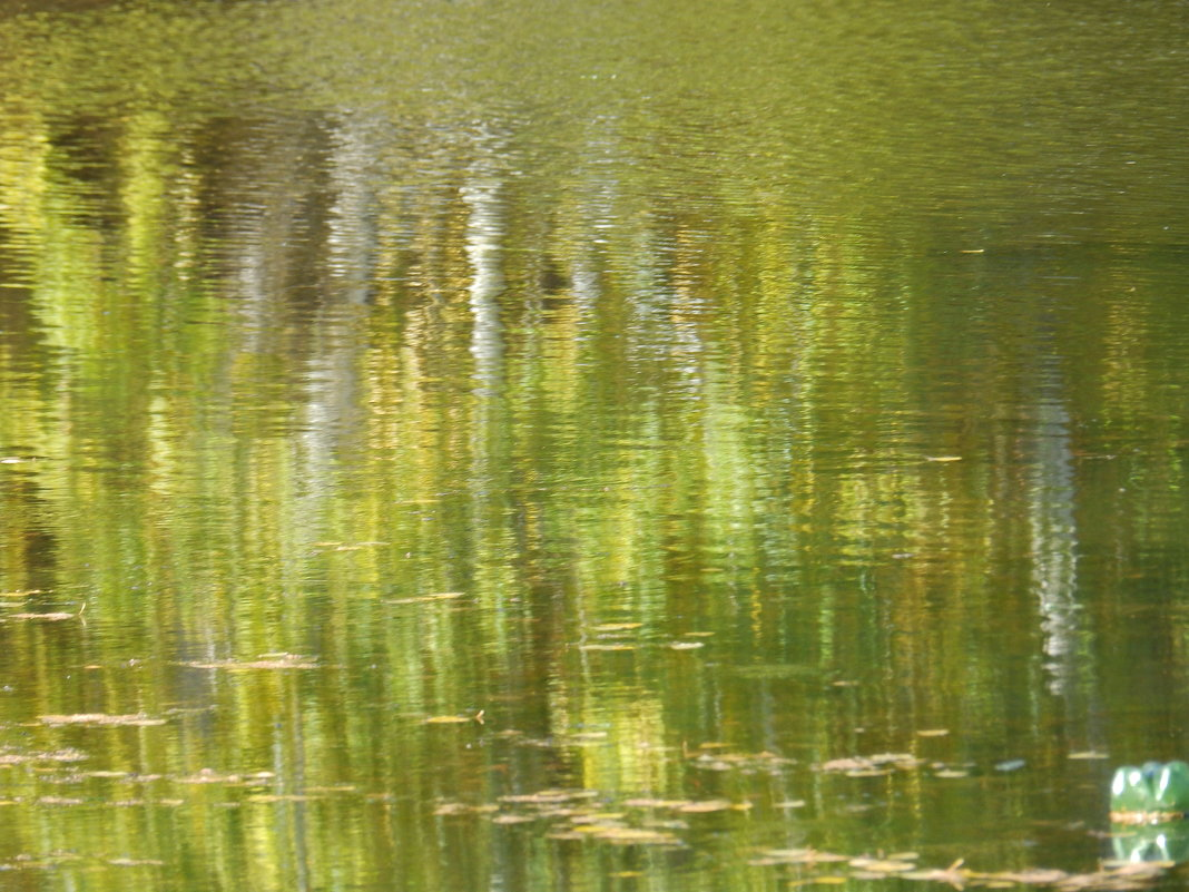 лесное озеро осенью - Анна
