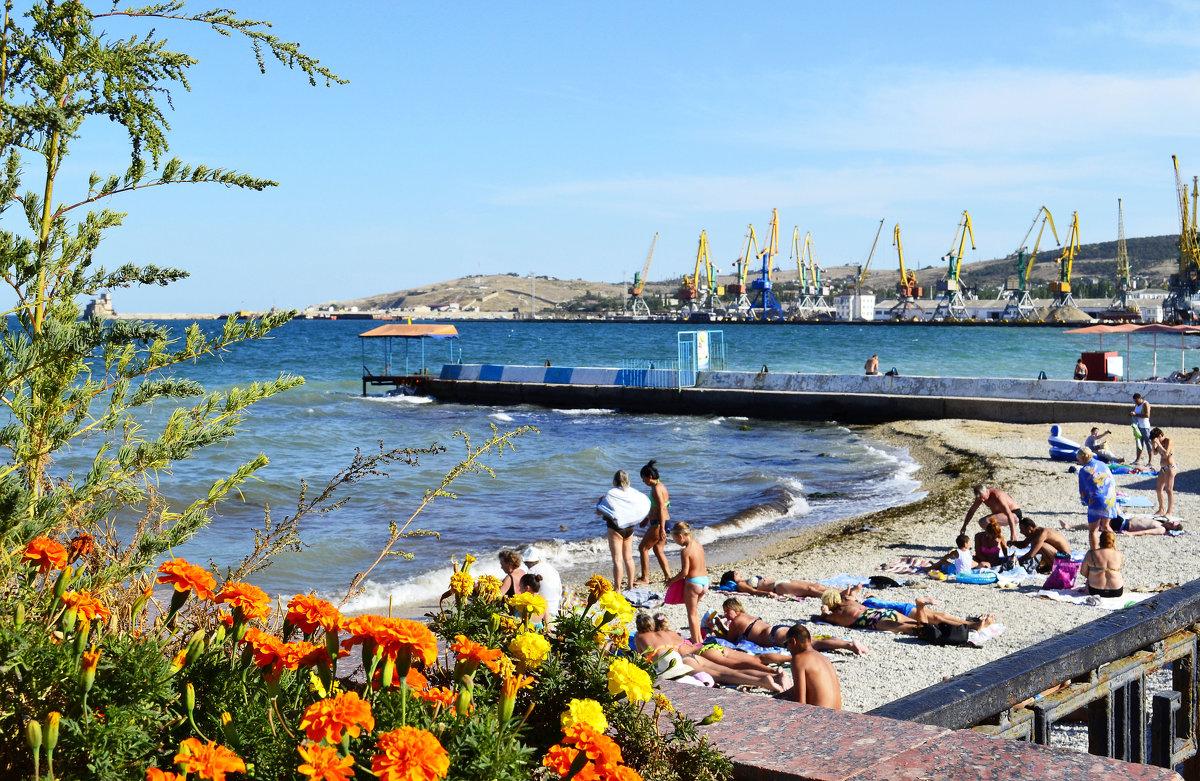 Порт - Виктор Шандыбин