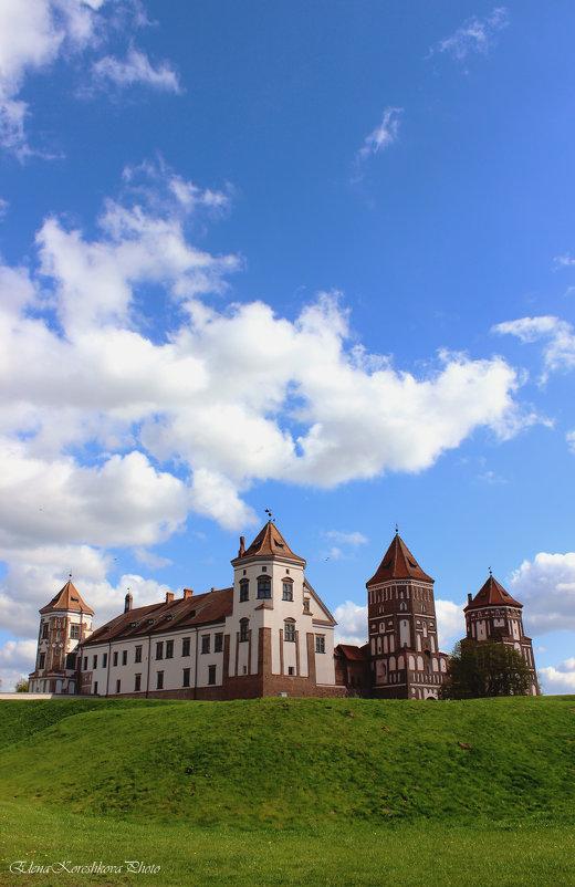 Мирской замок - Elena