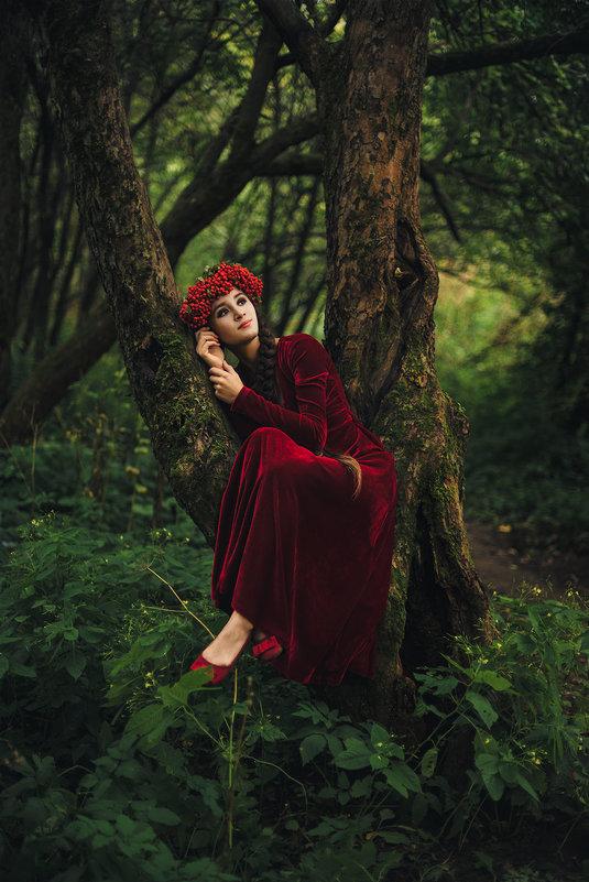 спящая принцесса - Alice Lain