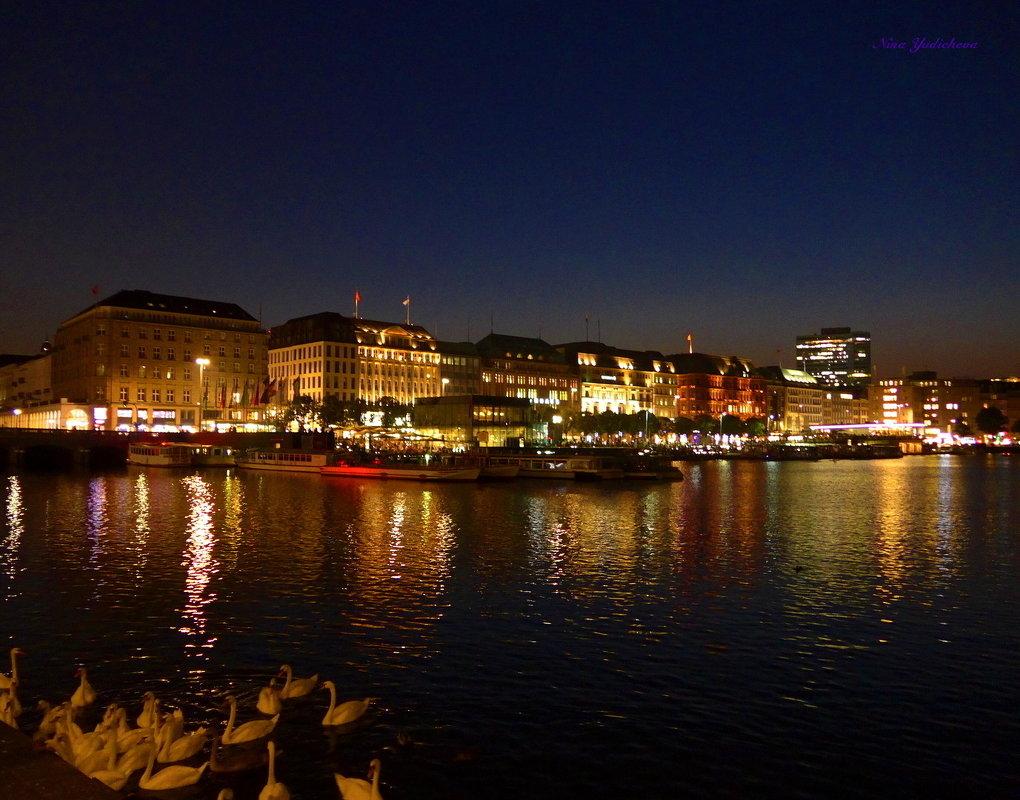 Очарование ночного Гамбурга (серия) Кружат лебеди в вальсе ночи на озере Альстер - Nina Yudicheva