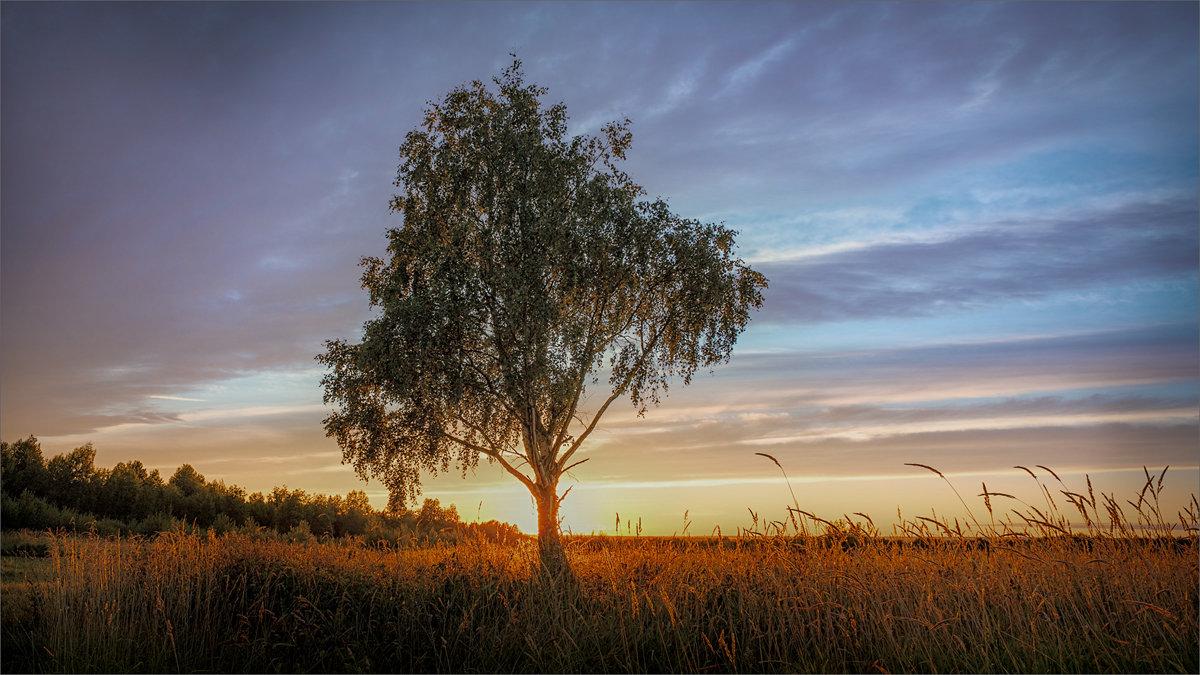 Лето на закате... - Александр Никитинский