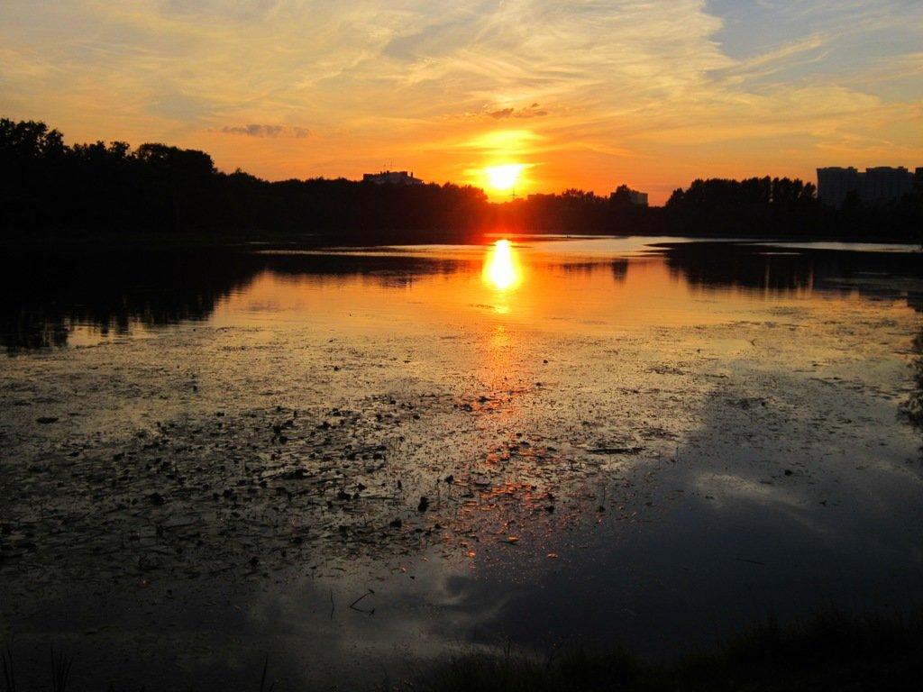 В закатном блеске пламенеет снова лето - Дмитрий Никитин