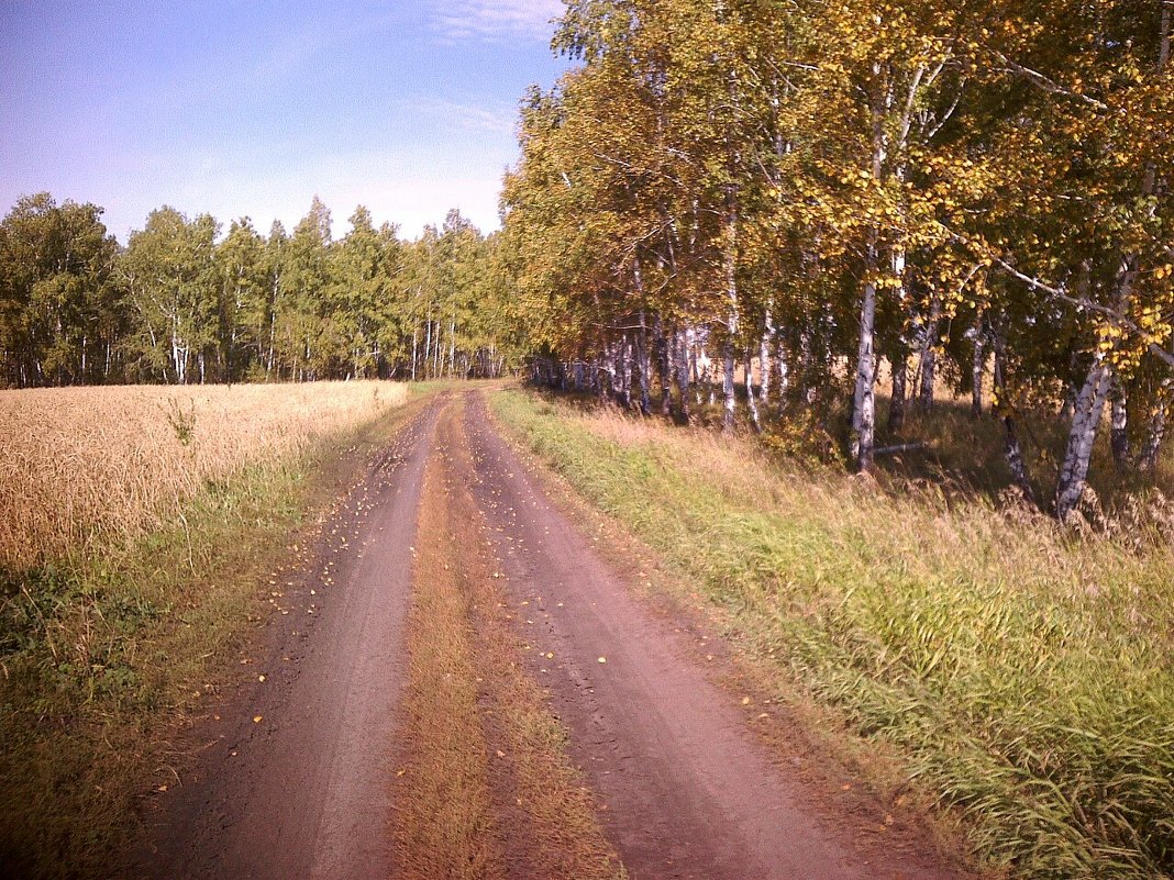 Пейзаж - Елена *