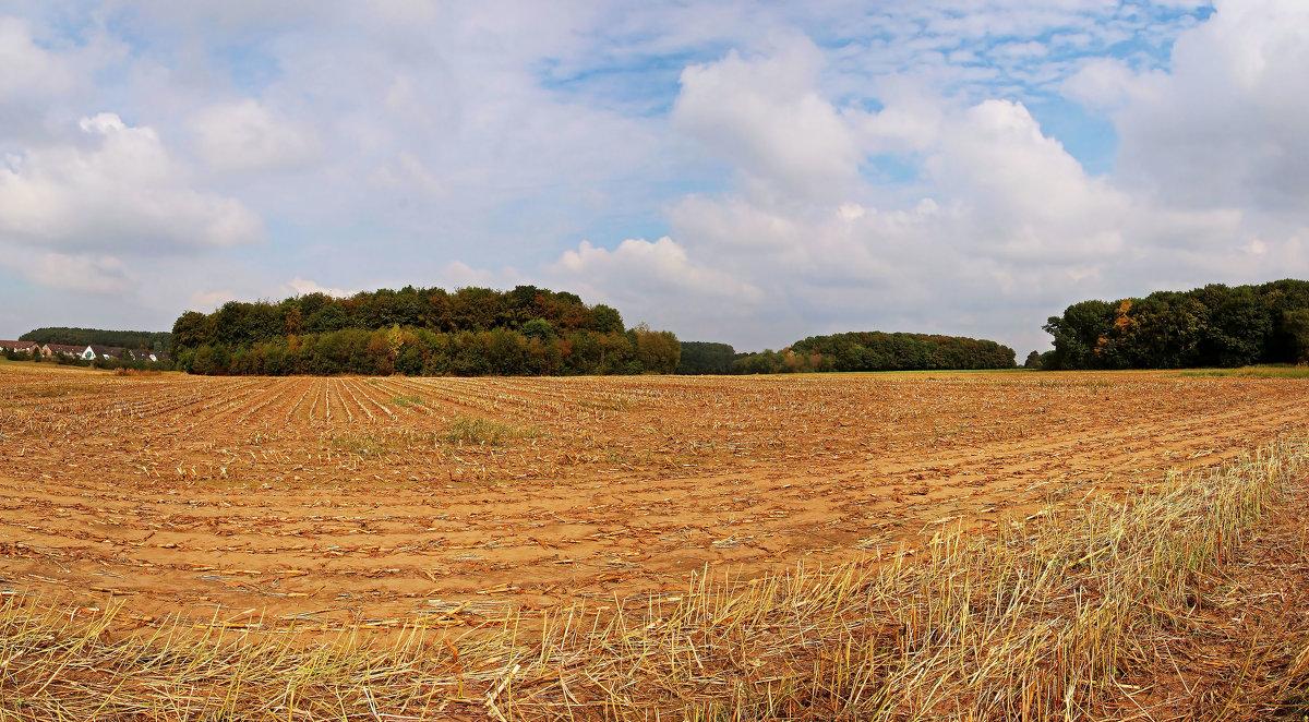 Осени панорама - Alexander Andronik