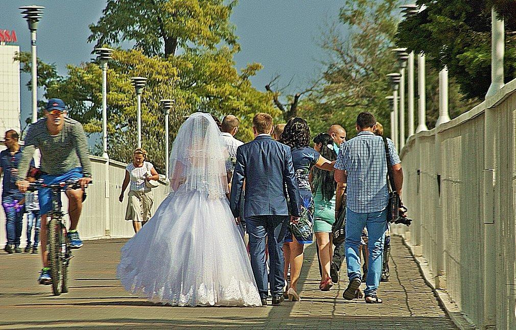 молодожены на Тещином мосту - Александр Корчемный