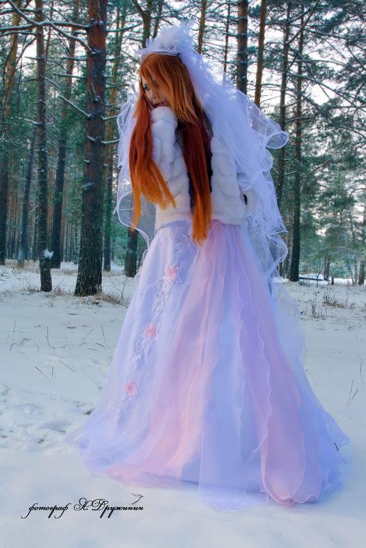 -25 градусов мороза - Андрей Дружинин