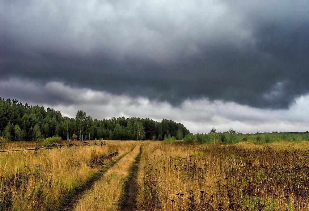 Не перечислить осени дождей... - Лесо-Вед (Баранов)