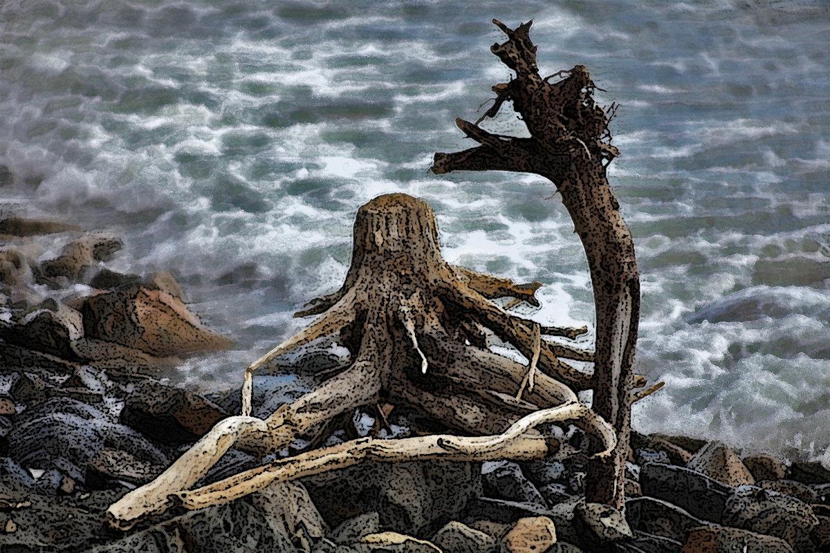 Деревянный Осьминог и его преданная Жирафа - Константин Николаенко