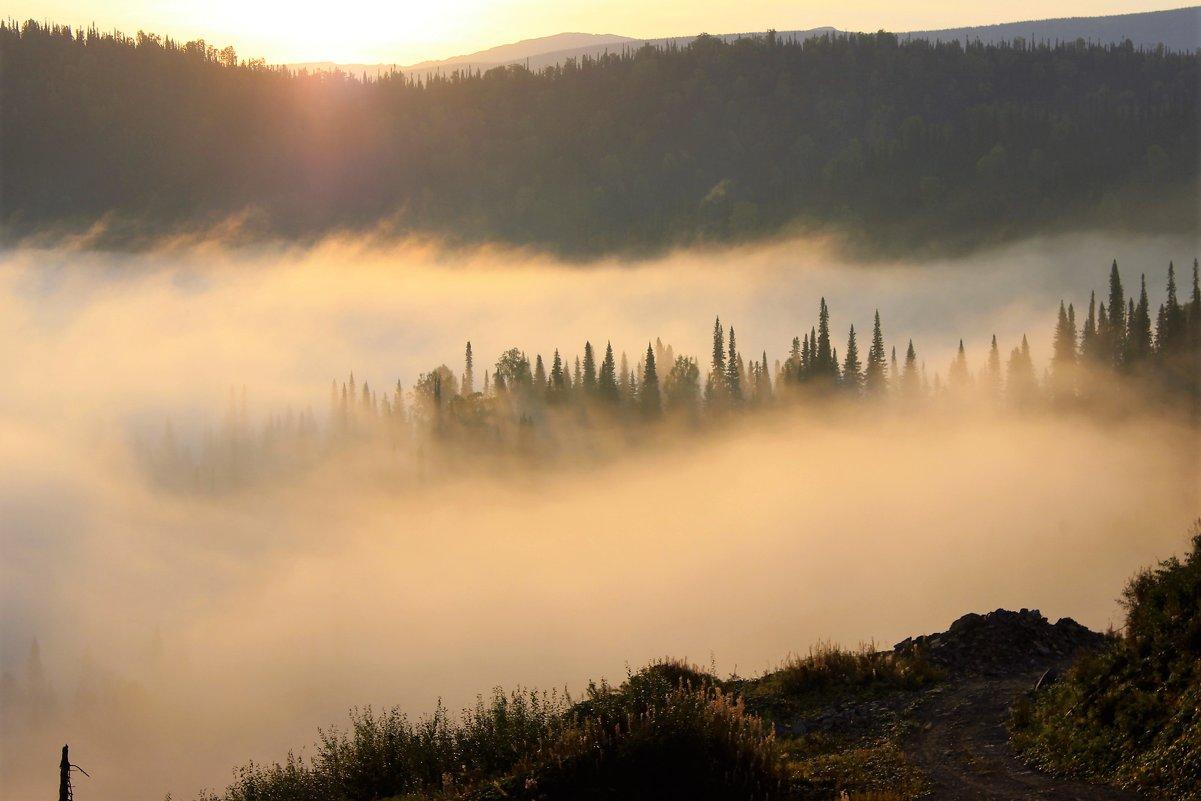 Островок в тумане - Сергей Чиняев