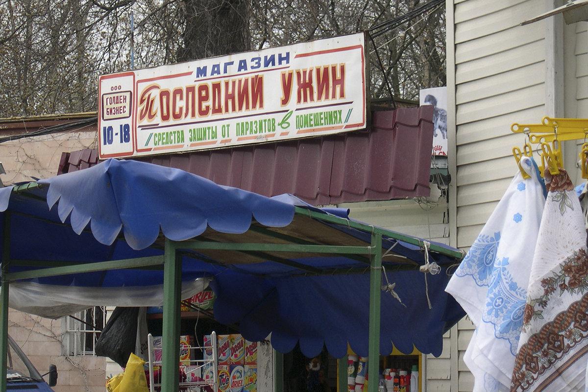 По-нашему - Владимир