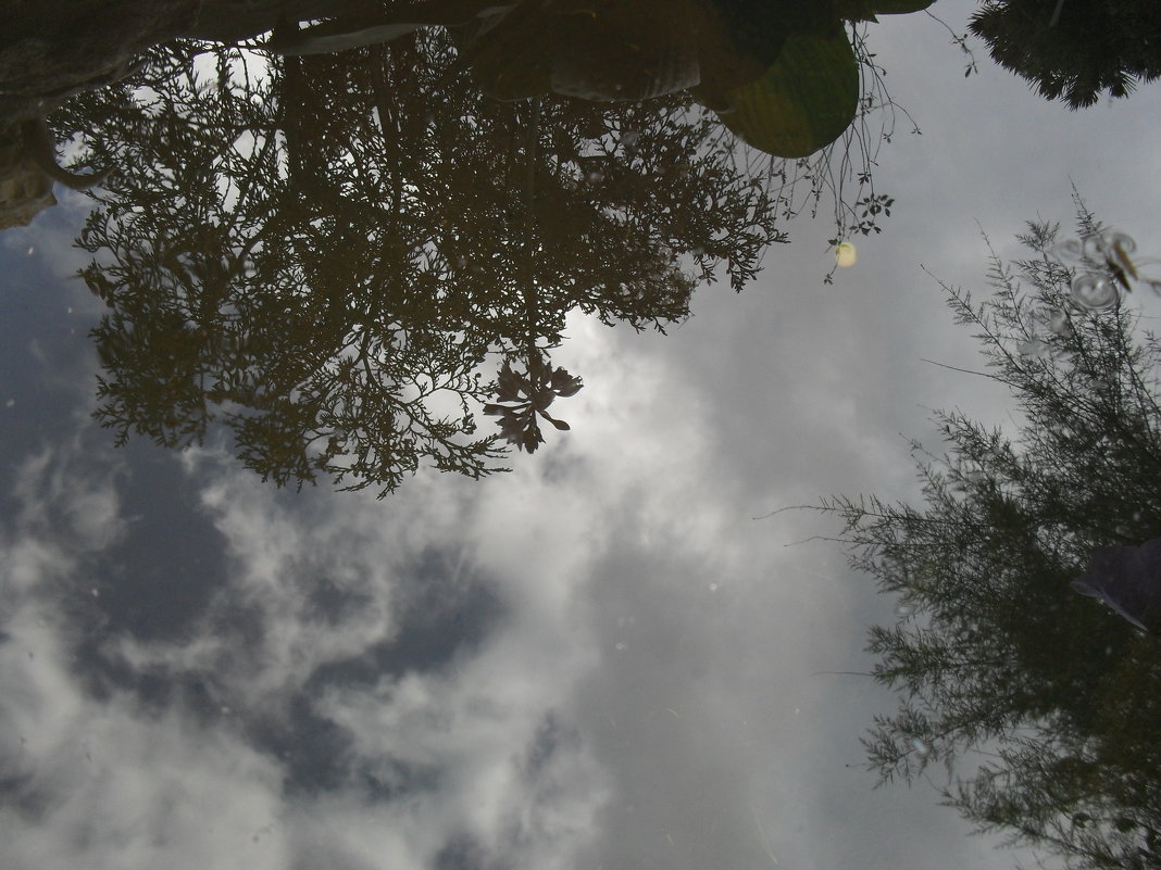 Отражённое небо - Анатолий