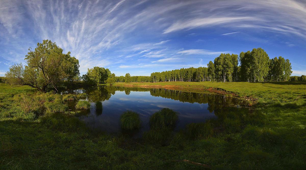 На пруду - Сергей Жуков