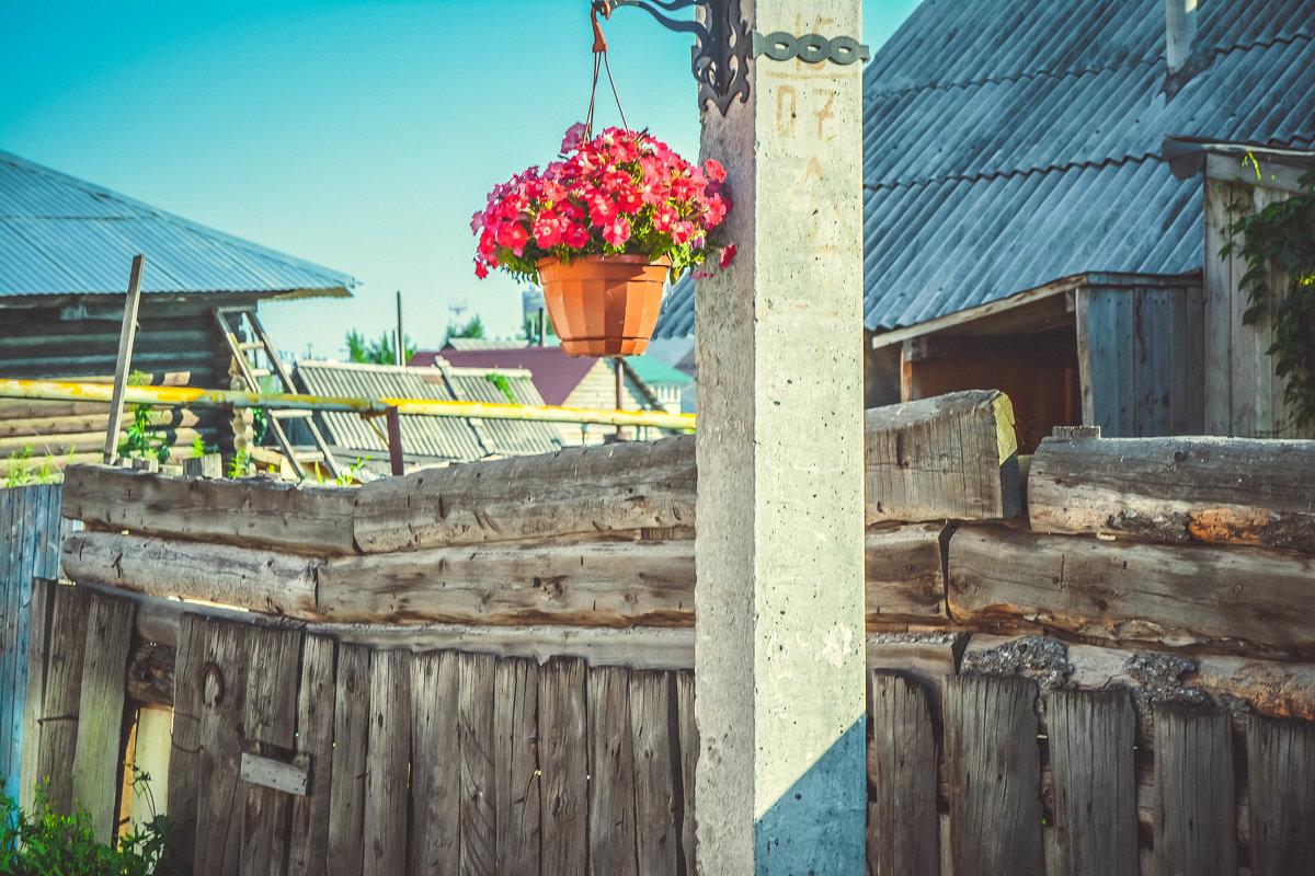 Цветы на столбе - Света Кондрашова