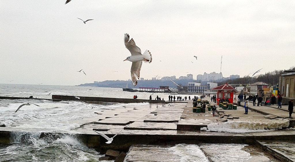 Одесский пляж зимой - Галина Pavel