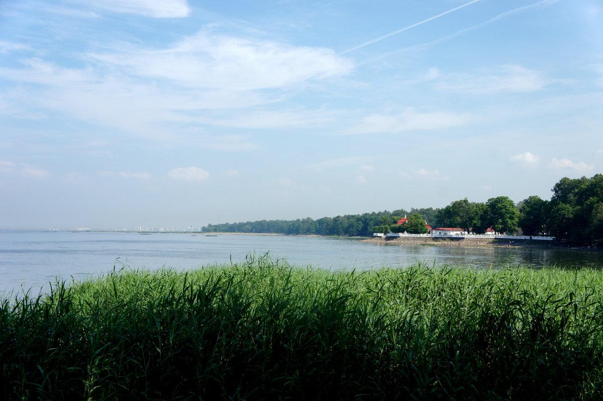 Вид на дворец Монплезир - Елена Павлова (Смолова)