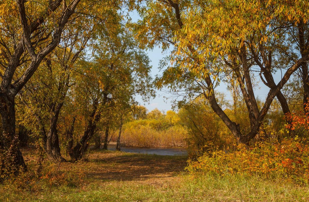 Осень - Сергей Сол
