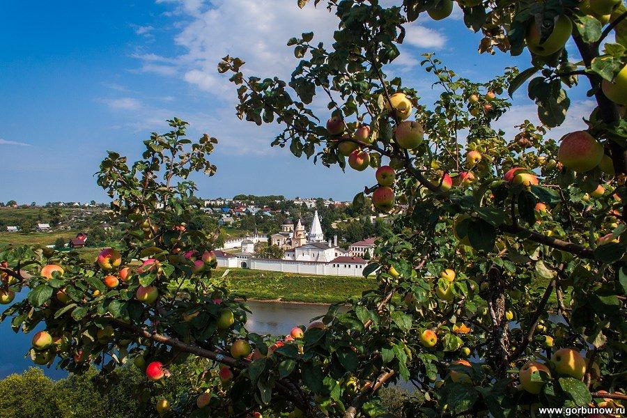 Яблочный Спас - Александр Горбунов