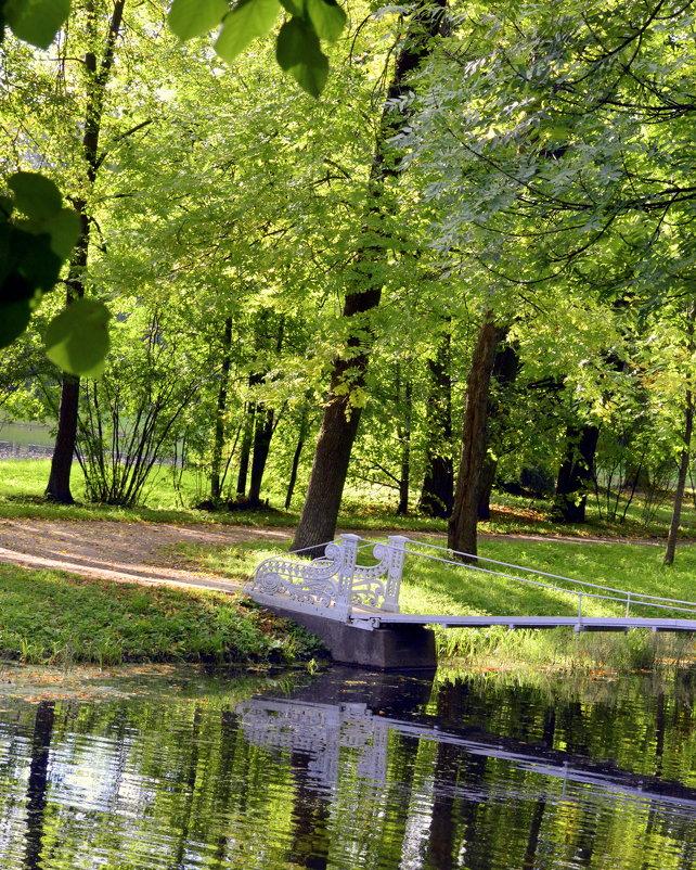 В парке осенью  /2/ - Сергей