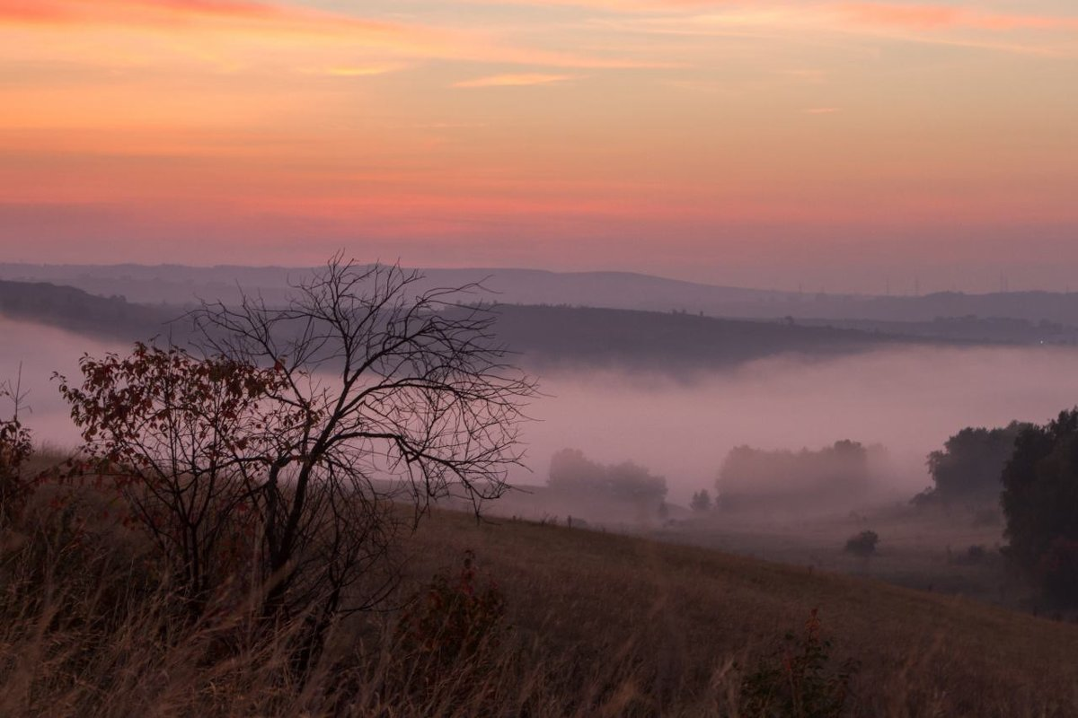 Туманное утро - Иван