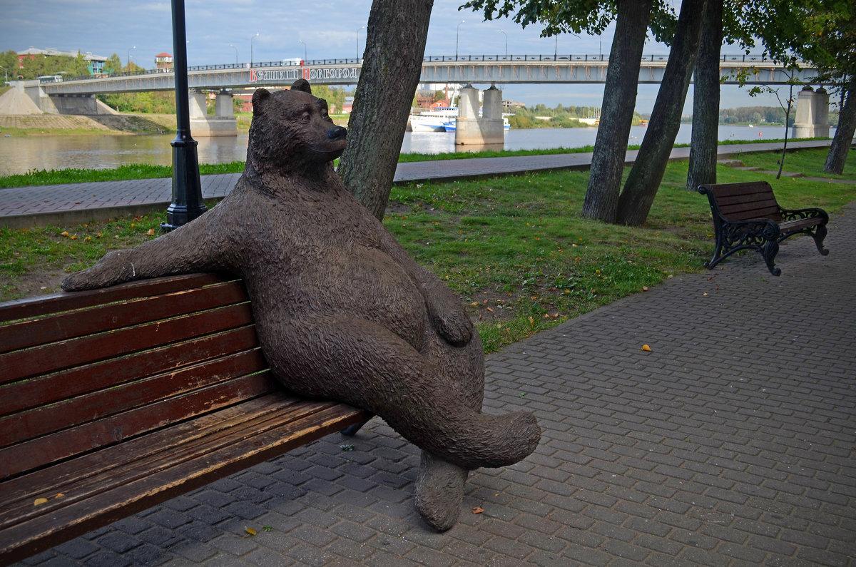 Новгородский медведь - Наталья Левина