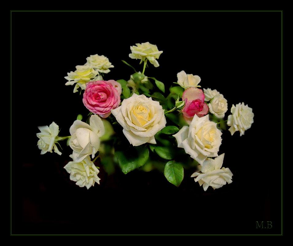 Лепестки белых роз... Нежные... нежные. - Людмила Богданова (Скачко)