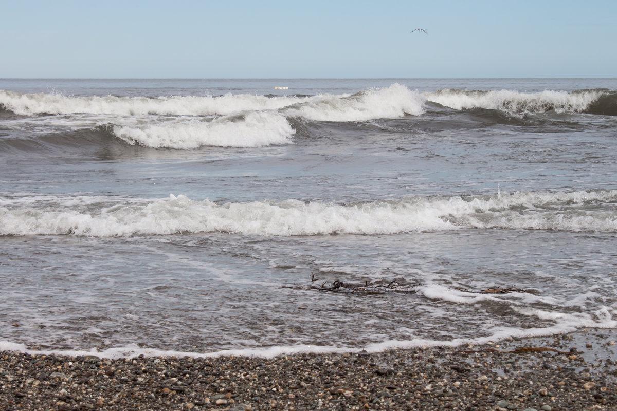 море волнуется раз... - Наталья Литвинчук