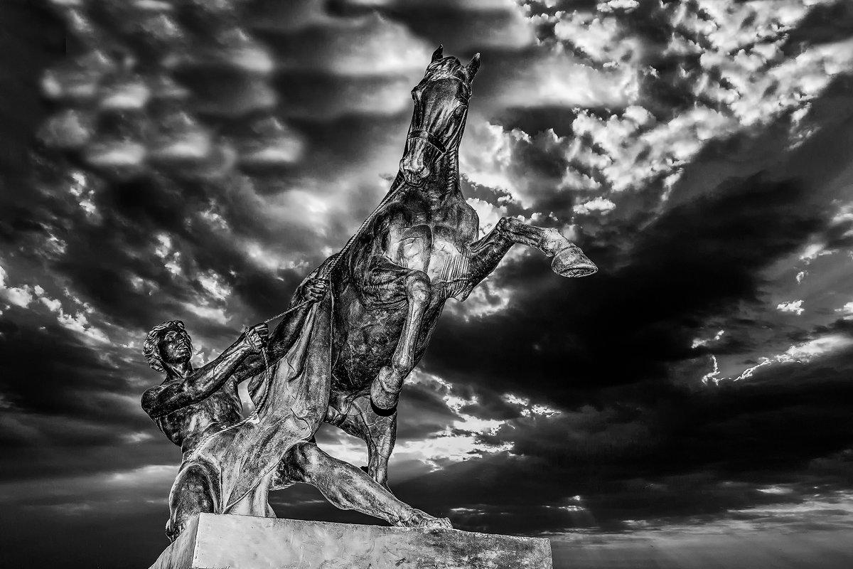 Укрощение коня - Александр Неустроев
