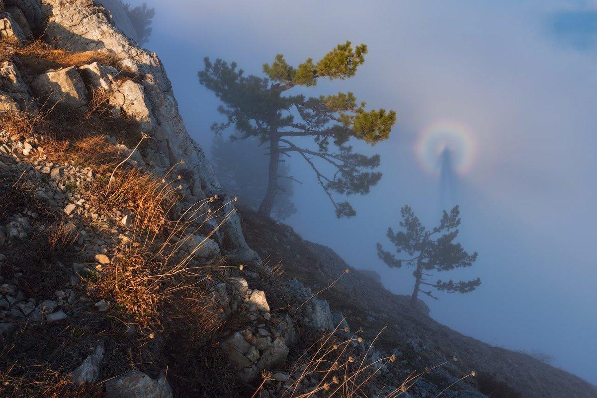 Брокненский призрак - Zifa Dimitrieva